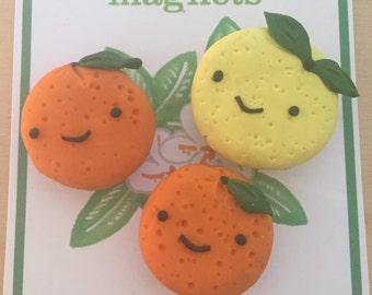 Happy Citrus magnet set