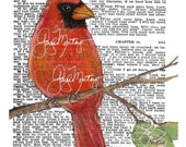 F R E E  Shipping  print  Male Red CARDINAL Let Not Your Heart Be Troubled  Art Print  Religious Hymn 5x7