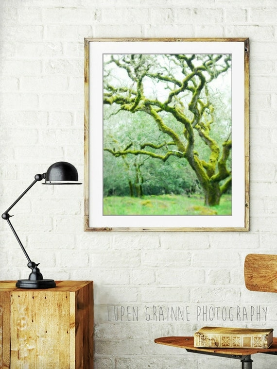"Oak tree photograph - woodland nursery art - fairy tree - dreamy landscape - moss green - green wall art ""Mossy Woods"""