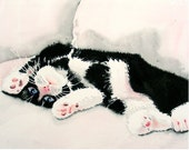 1. Black Cat Art / Watercolor print / Animal art / Cat artwork / Kitty kitten / Tuxedo cat painting / Black and white painting /  Cat