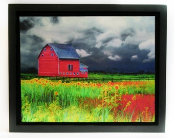 The Red Barn, 11x14 inches, Framed Fine Art Photography, Nature photography, #Sunflowers #Red barn #Farm #Country