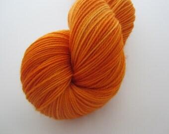 DTO - Fresh Pumpkins