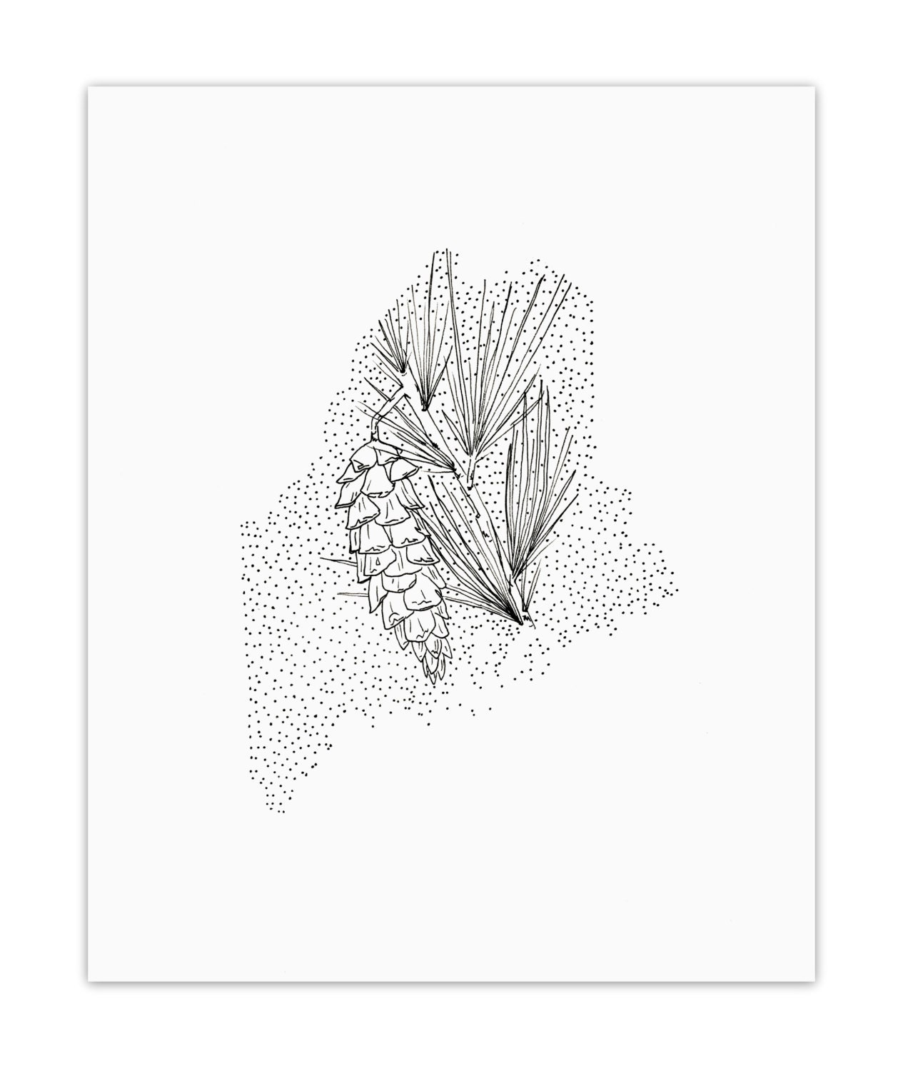 Maine White Pine Cone State Flower Drawing Giclee