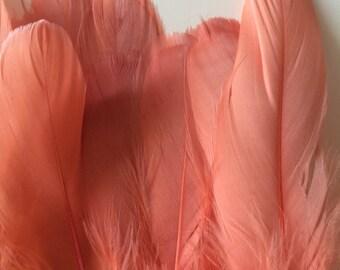 PRIMA GOOSE  / Burnt Peach  / PR - 07