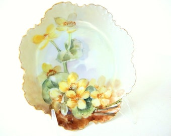 Antique Hand Painted Yellow Flowers on Flat Saucer - Rosenthal Bavaria