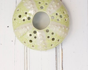 medium urchin wall hanging, urchin tabletop sculpture, green