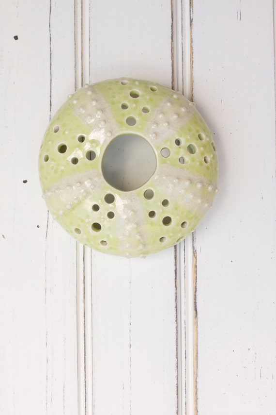 small urchin wall hanging, urchin tabletop sculpture, green