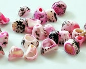 Pink Dyed Shell Beads - GM393