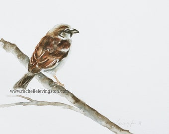 modern minimalist art minimalist painting for her watercolor painting of Sparrow painting bird PRINT bird Painting bird wall art 11x14