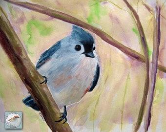 Titmouse Bird Watercolor Painting 9x12 Fine Art Contemporary Songbird Original Art for Bird Lover Titmouse in Spring Morning