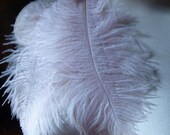 """3 Blush Ostrich Drabs  5"""" - 8"""" Feathers for Bridal, Headbands, Flapper, Masks, Tribal Fusion, Costume Design"""