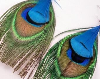 Feather Earrings Peacock blue eye