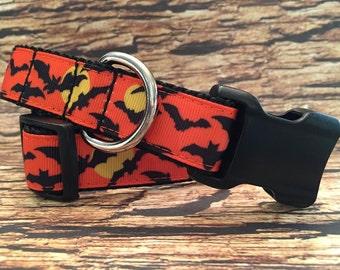 Halloween Bats Dog Collar, Sizes XS, S, M - L - XL