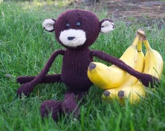 Dorkie the Monkey