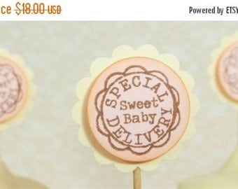 SALE Baby Shower Cupcake Toppers Sweet Baby Girl Special Delivery Food and Sweets Picks Set of 25