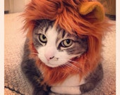 Lion Hat for Cats and Dogs