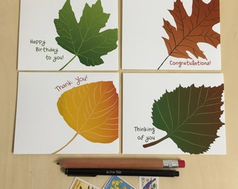 Leaf Greeting Cards - Boxed Set of 4