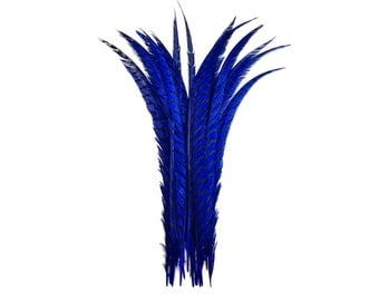 "Long Feathers, 5 Pieces - 30-35"" ROYAL BLUE ZEBRA Lady Amherst Pheasant Tail Super Long Feathers : 3394"