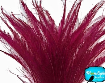 USA Feathers, 5 Pieces - BURGUNDY BLEACHED Peacock Swords Cut Feathers : 3990