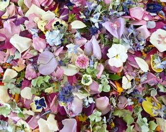 Bulk Dry Petal Confetti,  Dry Flower Confetti, Wedding Decorations, Dry Flowers, Aisle, Flower Girl, Reception Decor, 4 US cups of Confetti