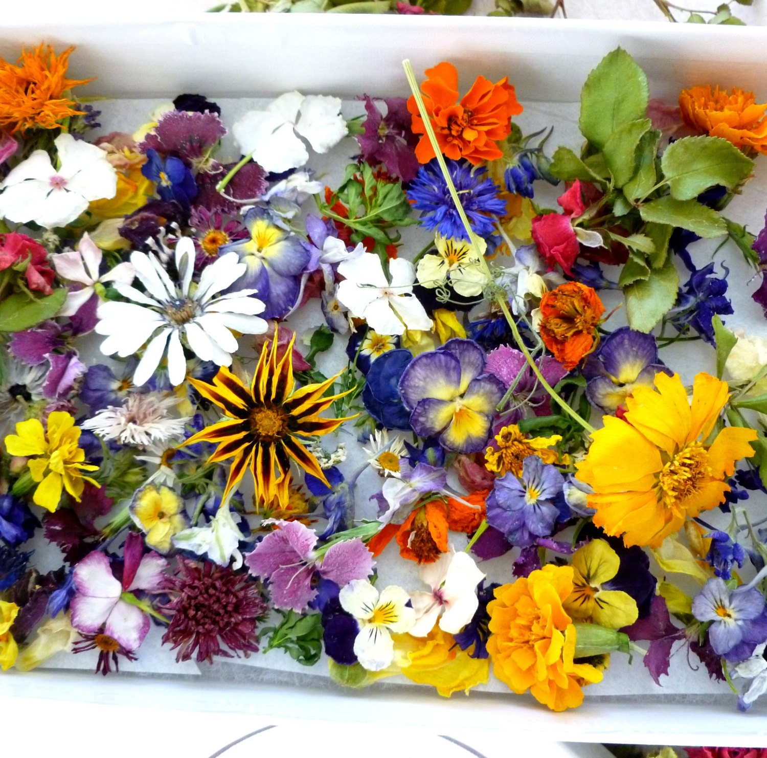 Dry wedding flowers craft supply gift box centerpiece for Dried flowers craft supplies