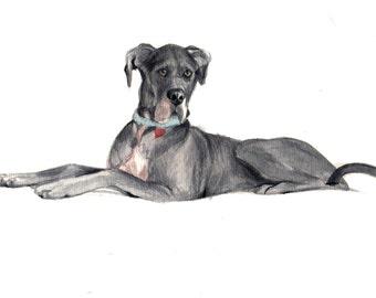 Watercolor Custom Pet Portrait *CONVO FOR AVAILABILITY* Dog Portrait, Great Dane Portrait, Animal Lovers Gift