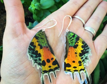 Real Wings, Madagascar Sunset Moth,Pink Real Butterfly Wing Earrings, Peacock Metallic, Bohemian Earrings, Boho Gypsy, Unique Original BW035