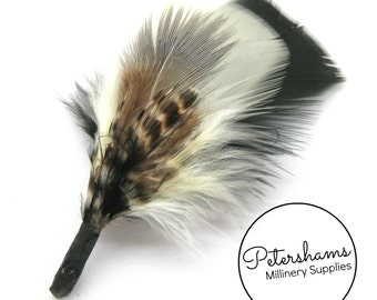 Men's Grey on Black Hat Feather Millinery Mount (Turkey & Pheasant Feathers)
