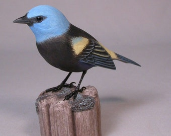 Blue-necked Tanager Hand Carved Wooden Bird Carving