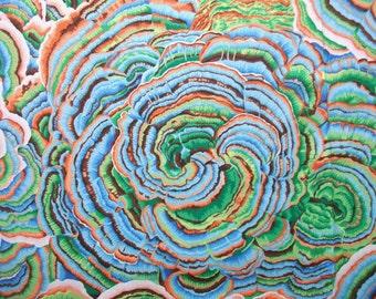 Tree Fungi Spring 2016 Philip Jacobs Rowan Fabric Yard