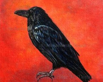 Corvus Corax Raven - raven art, crow, corvus corax, bird art, wildlife art, raven gift, raven card, crow card, crow gifts,