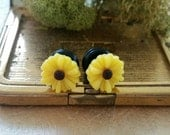 Flower Plugs, Wedding Gauges, Yellow, Mini, Sunflowers