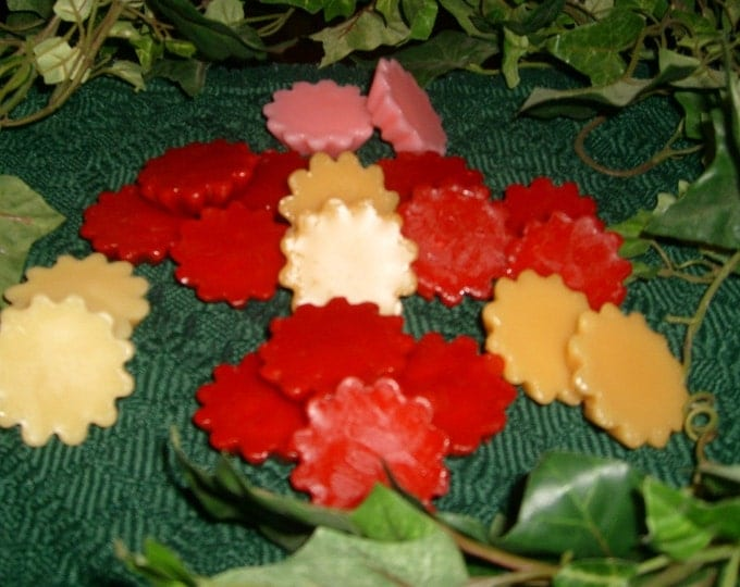 Variety Pack of Scented Wax Melts, Includes 8 popular fragrances for Wax Melt Warmers: Chocolate Chip Cookie Dough, Christmas Tree, Cinnamon