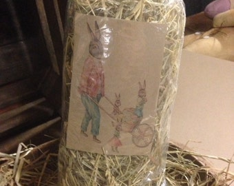 Primitive easter grass filler