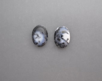 Dendritic Agate Pair