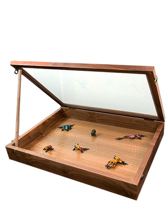 Portable Exhibition Display Cases : Portable countertop display case