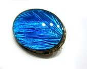 "Antique Morpho Butterfly Wing Pin Bright Blue singed Czechoslovakia Brass Vintage Brooch 1 1/2"""