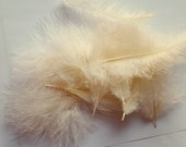 Ivory Marabou feathers, craft supplies, DIY, bridal wedding hair clips, feathers, Fluffy Feathers, Fly Feathers, Doll Hair Feathers
