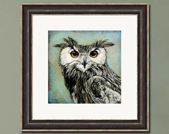 PRINT or GICLEE Reproduction -- Owl Artwork Owl Face Closeup --Through Wisdom's Eyes