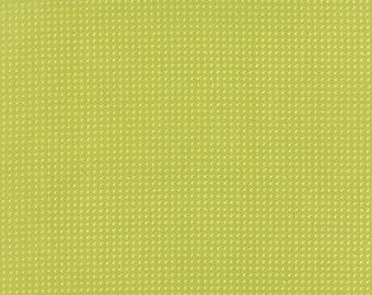 Flow Green Apple Belnder Zen Chic # 96-20  Moda Quilt Fabric by the 1/2 yd