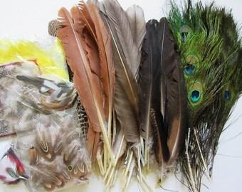 1/2 lb Feather Assortment ~ Peacock, Pheasant, Guinea, More