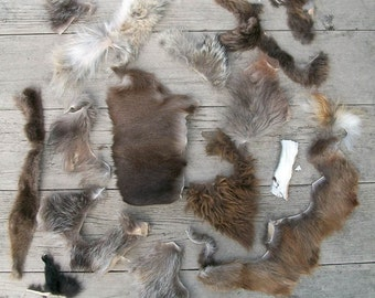 Huge Lot of Fur Scraps