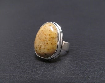 Sterling Silver Ring Fossil Ring Sterling and Fossil Stone Ring Petrified Palm Wood Ring Jewelry by Thunder Sky Jewelry Philip Troyer
