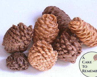 10 Gumpaste pine cones for cake decorating, fall wedding cakes, or for Christmas wedding cake ideas. Autumn cake topper