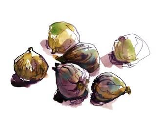 Figs, Kitchen Art, food art, hostess gift - print from an original watercolor sketch