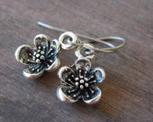 Titanium Earrings with Silver Cherry Blossom Charms Hypoallergenic