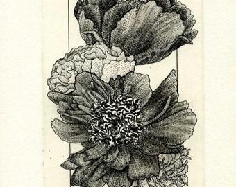 Four Blossoms