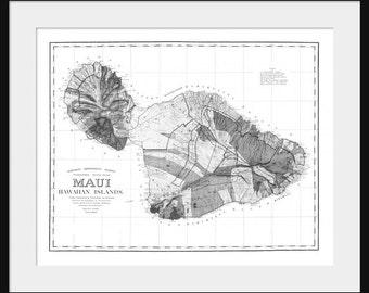 maui hawaii Map Vintage Print Poster Topography