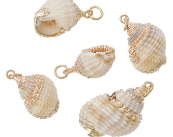 """2 Natural Conch SeaShell Charms with gold plating and gold bail, white/tan/peach sea shell, about 0.75"""" to 1.25"""" long, cho0147"""