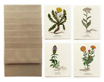 Medicinal Plants - Set of 8 Plantable Seed Greeting Cards